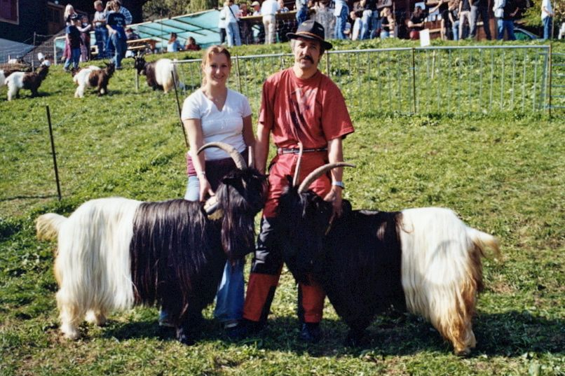 Walliser Schwarzhalsziegen 2004-2005 032.jpg