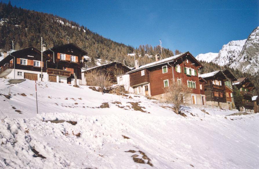Walliser Schwarzhalsziegen 2001-2004 049.jpg