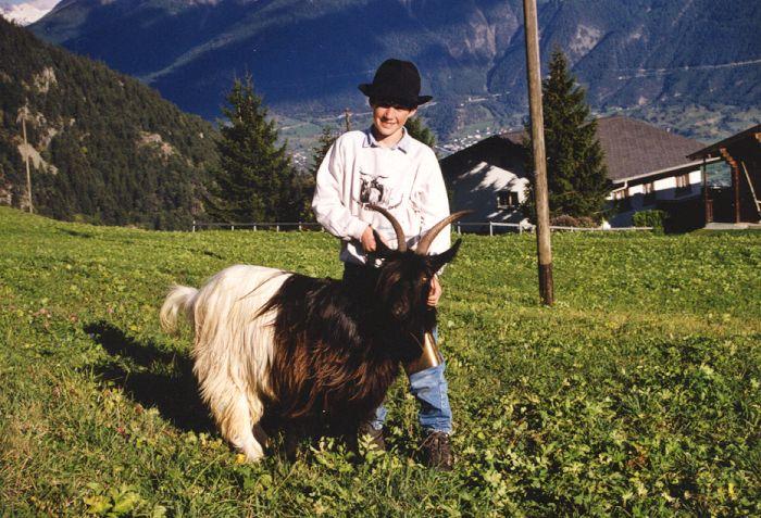 Walliser Schwarzhalsziegen 93-2001 065.jpg