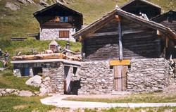 Walliser Schwarzhalsziegen 93-2001 022.jpg