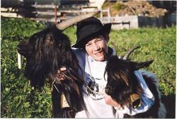 Walliser Schwarzhalsziegen 93-2001 060.jpg