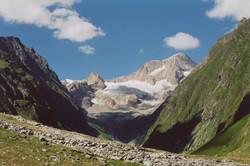 Walliser Schwarzhalsziegen 2001-2004 028.jpg