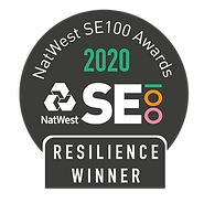 SE100_Badge_2020-RESILIENCE.png