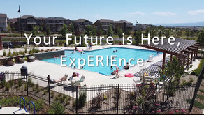 Experience Erie!