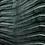 Thumbnail: Eco