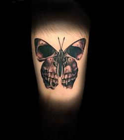 butterfly skull.jpg