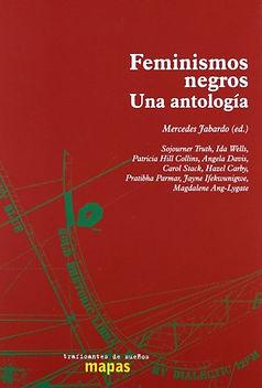 feminismos-negros-una-antología.jpg