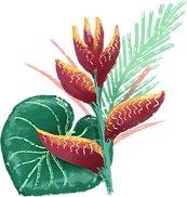 Tropical%20Flower%20_edited.png