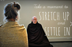 STEPH & SHINZEN MEDITATING