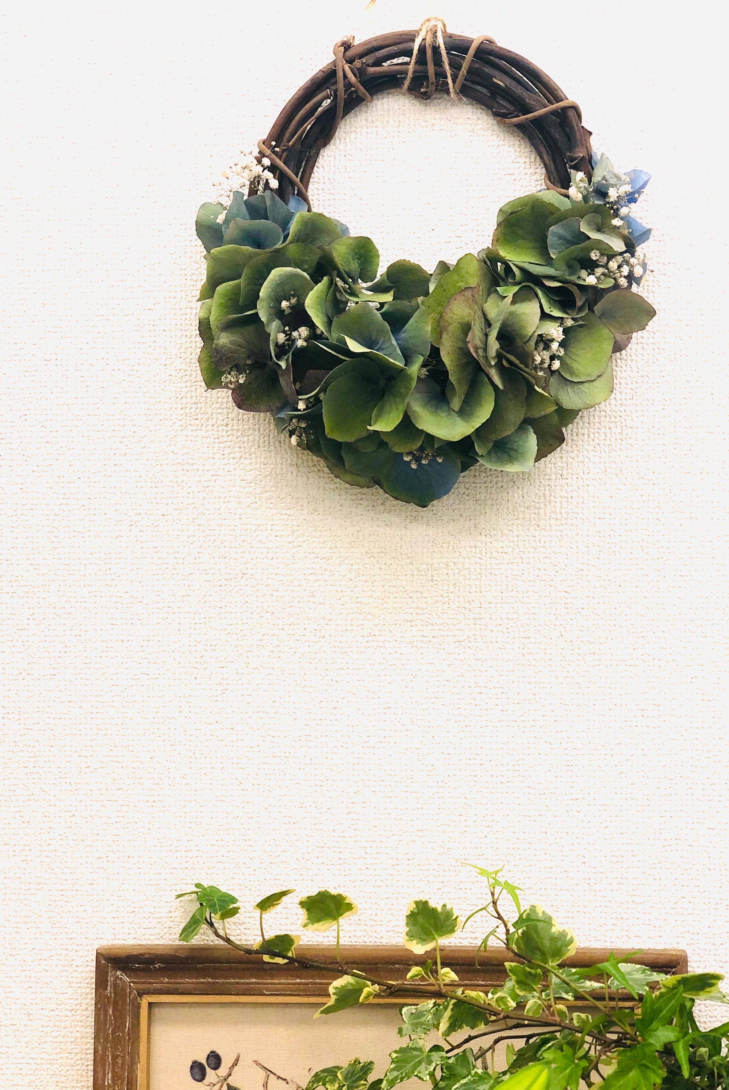 紫陽花 ハーフリース