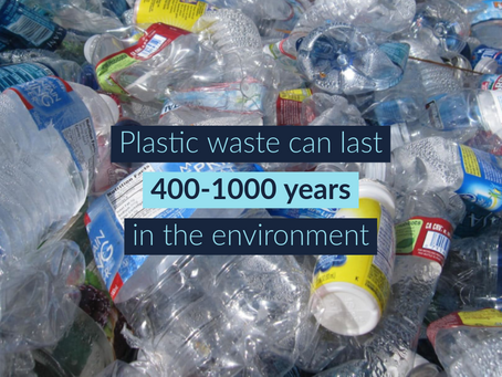 Ways to Encourage Your Employees To Use Less Plastic at Work