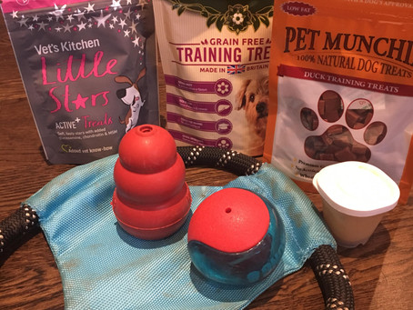 What's In My Dog Training Bag?