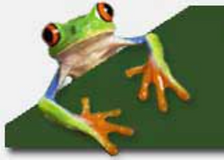 Crunchy Frog logo