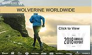 Wolverine_edited.jpg