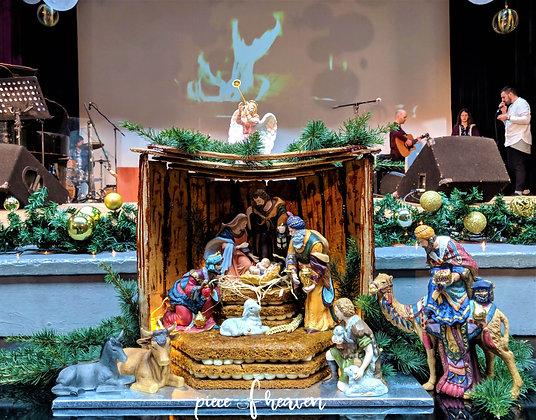 "Торта ""Рождество Христово"" - джинджифилова структура & морковена гола торта"