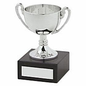 11.5CM SILVER PLASTIC CUP AWARD