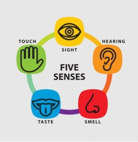 Use Your 5 Senses to Prevent a Suicide