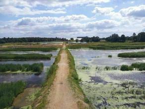 Ontdek de waterrijke gebieden bij Enschede