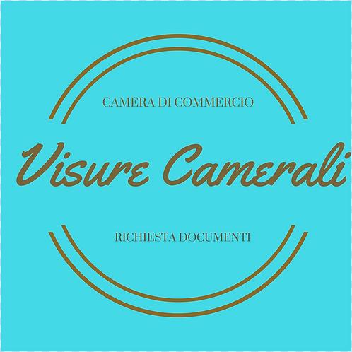 Visure Camerali