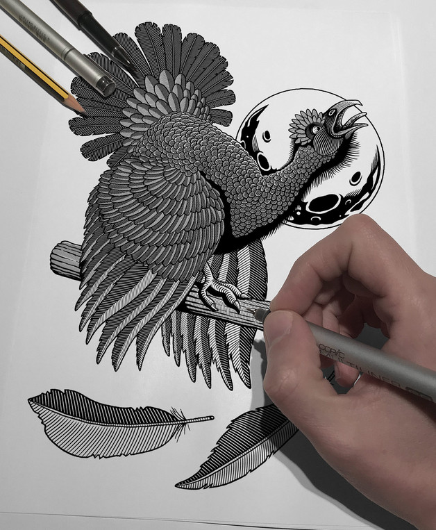allendale-black-grouse-hand-drawn-drawin