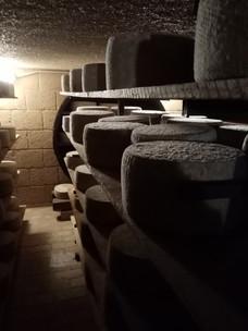 Fase di Stagionatura in assi di legno del Pecorino Gran riserva