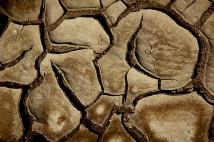 Mosaïc de fang