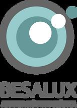 BESALUX 6-circulos mas grandes.png