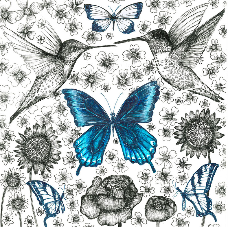 Pollinator Series: Blue Butterfly