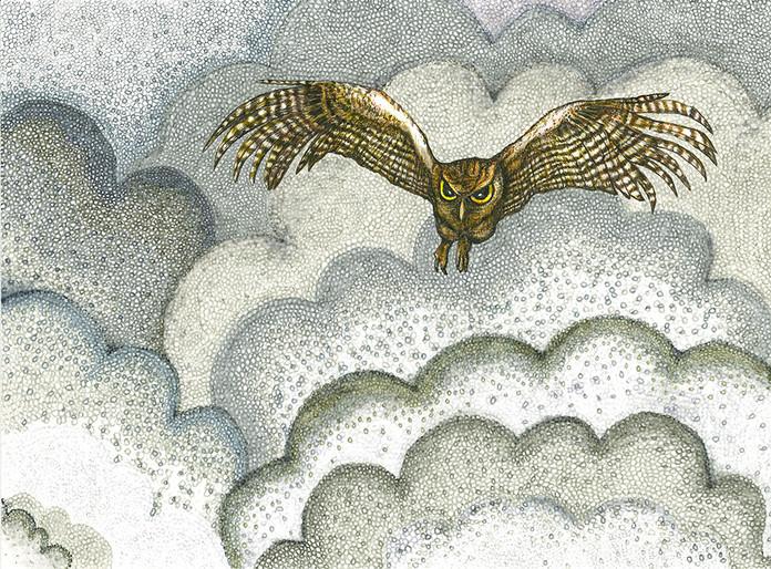 Smoke Series: Owl II