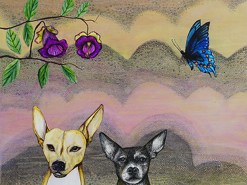 Dogs and Pollinators