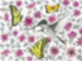 purplepassionhummingbird_edited.png