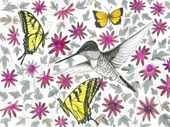Pollinator Series: Passion Flower
