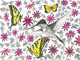 purplepassionhummingbird_edited.png