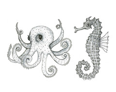 Octopus Seahorse