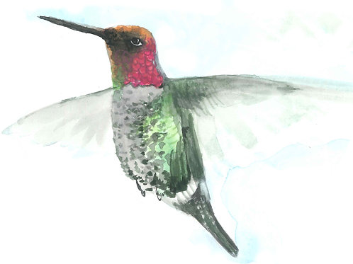 Sweet Anna's Hummingbird Folded Note Card