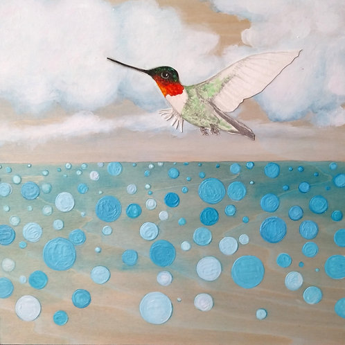 Hummingbird Sky