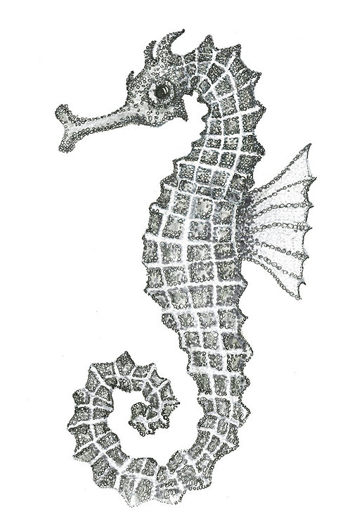 Grey series:Seahorse II Folded Note Card