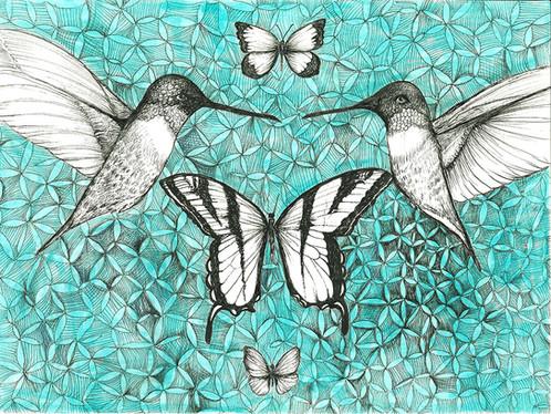 Pollinator Series: Hummingbird Butterfly