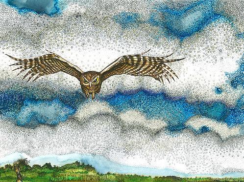 Western Screech Owl in smoke Folded Note Card