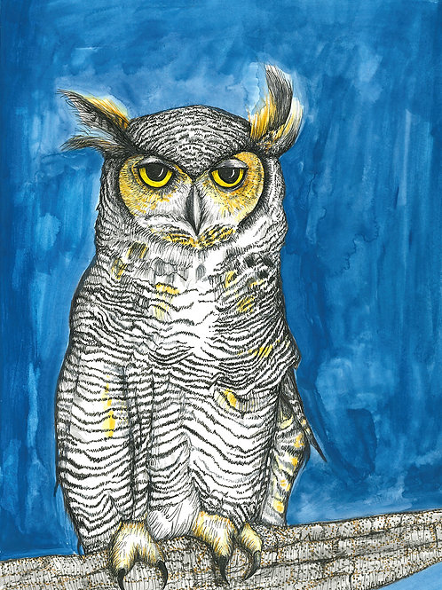 Great Horned Owl print on paper