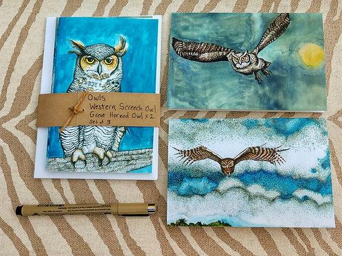 Owl Notecards Set of 3