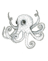Grey Series: Octopus