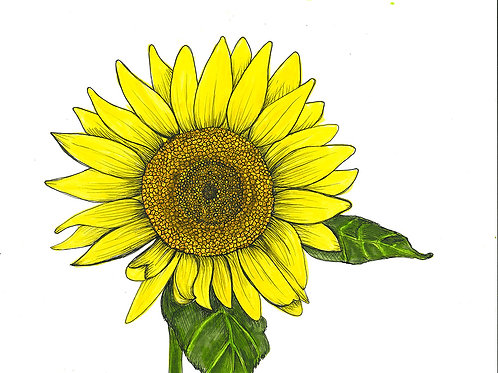 Sunflower Series Folded Note Card