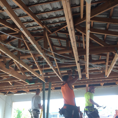 Garage Ceiling removed