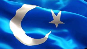 Kahramanlar Ocağı, Türkmeneli