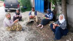 Lisinia Köy Çalışanları