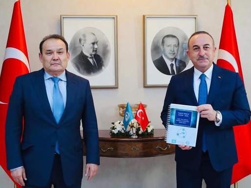 Türk Konseyi'nden Çavuşoğlu Ziyareti