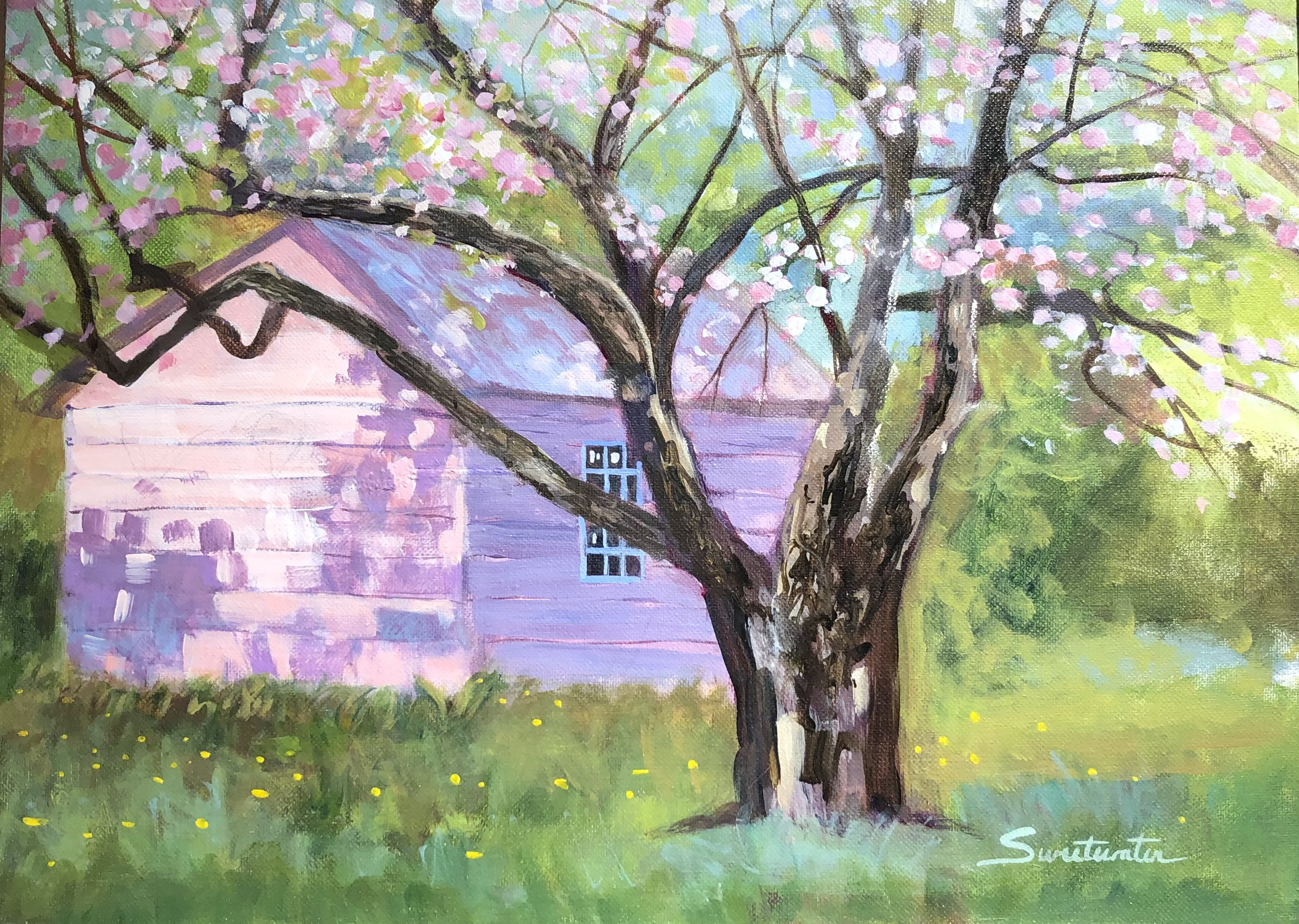 Janet's Apple Tree