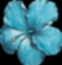 Flor azul.png