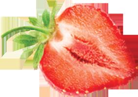fresa.png